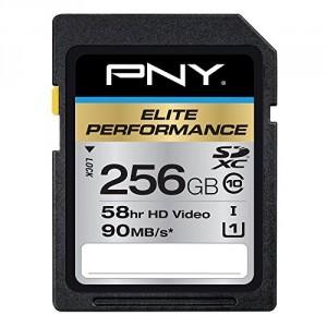 PNY-256GB-P-SDX256U1H-GE-01
